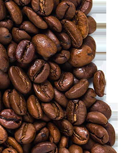 caffè in grani-home-sx